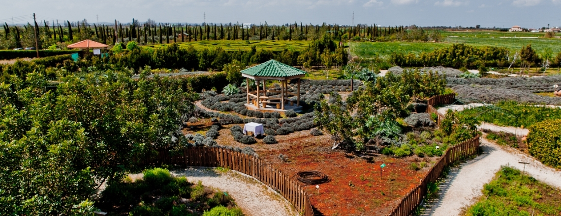 Cyherbia Botanical Garden, in the outskirts of Ayia Napa