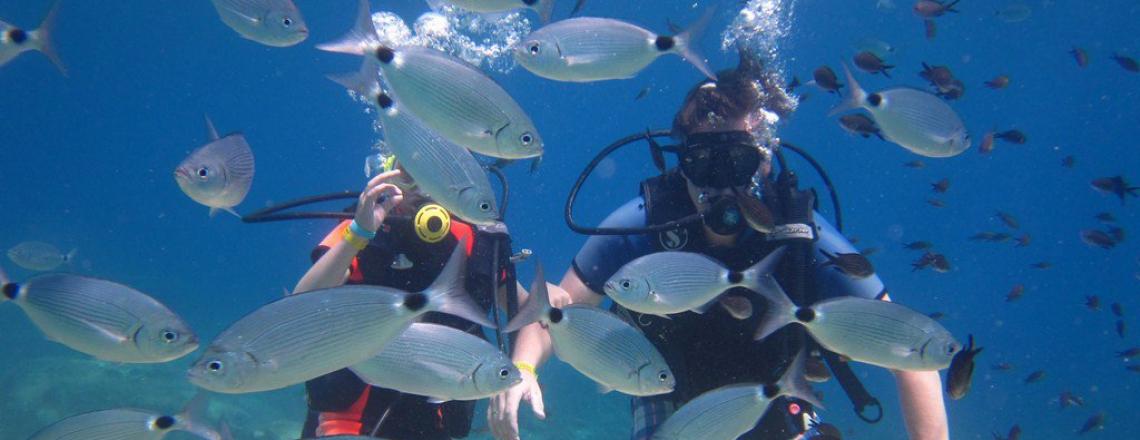 Дайвинг-центр Lucky Divers в Айя-Напе