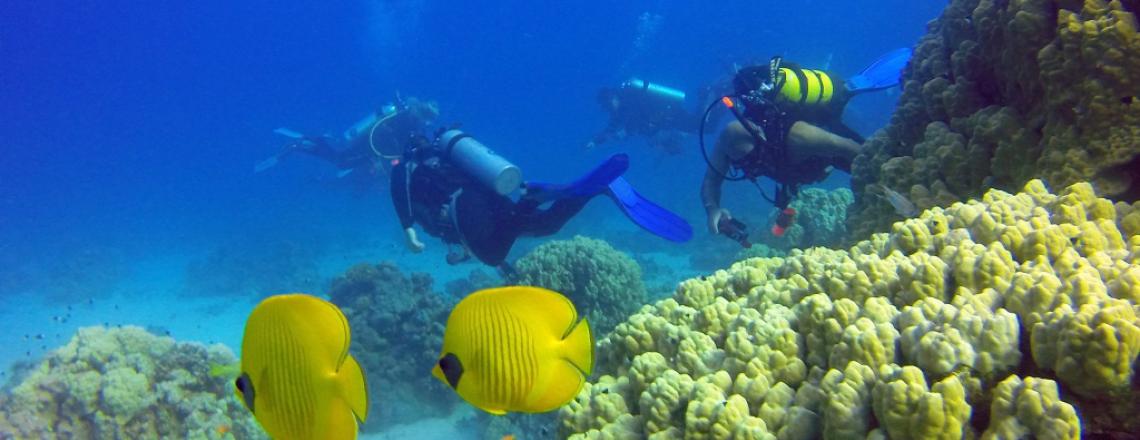 Nemo Dive Center, дайвинг-центр «Немо» в Ларнаке