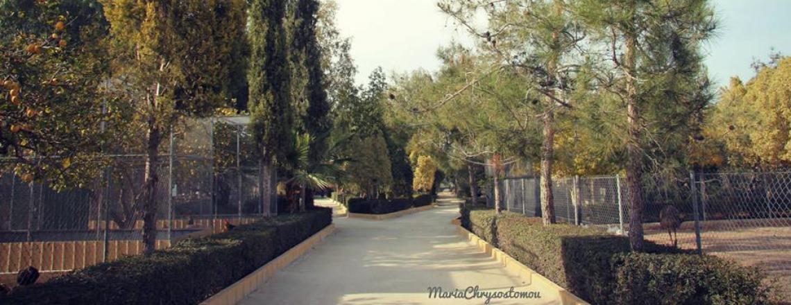 Melios Pet Park, зоопарк «Мелиос» в Никосии