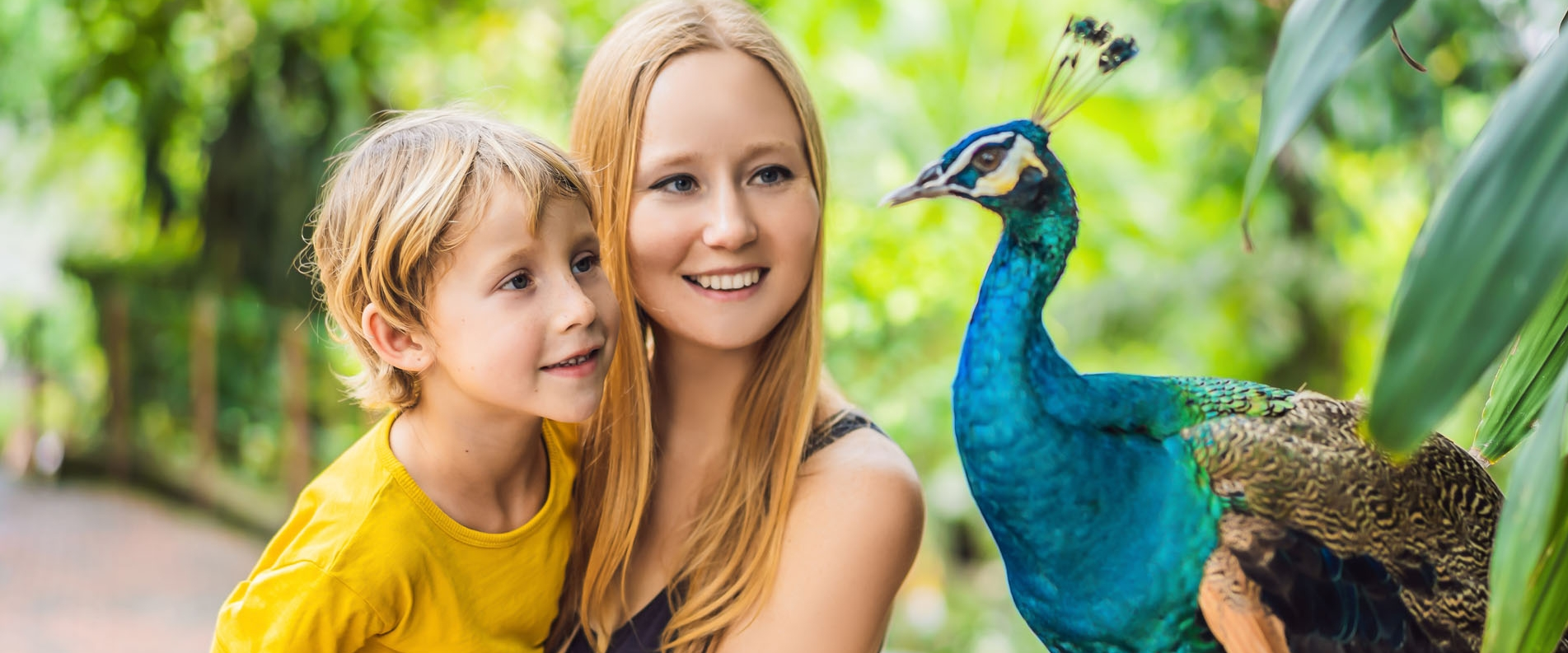 The Guide to the Most Remarkable Zoo Parks in Cyprus