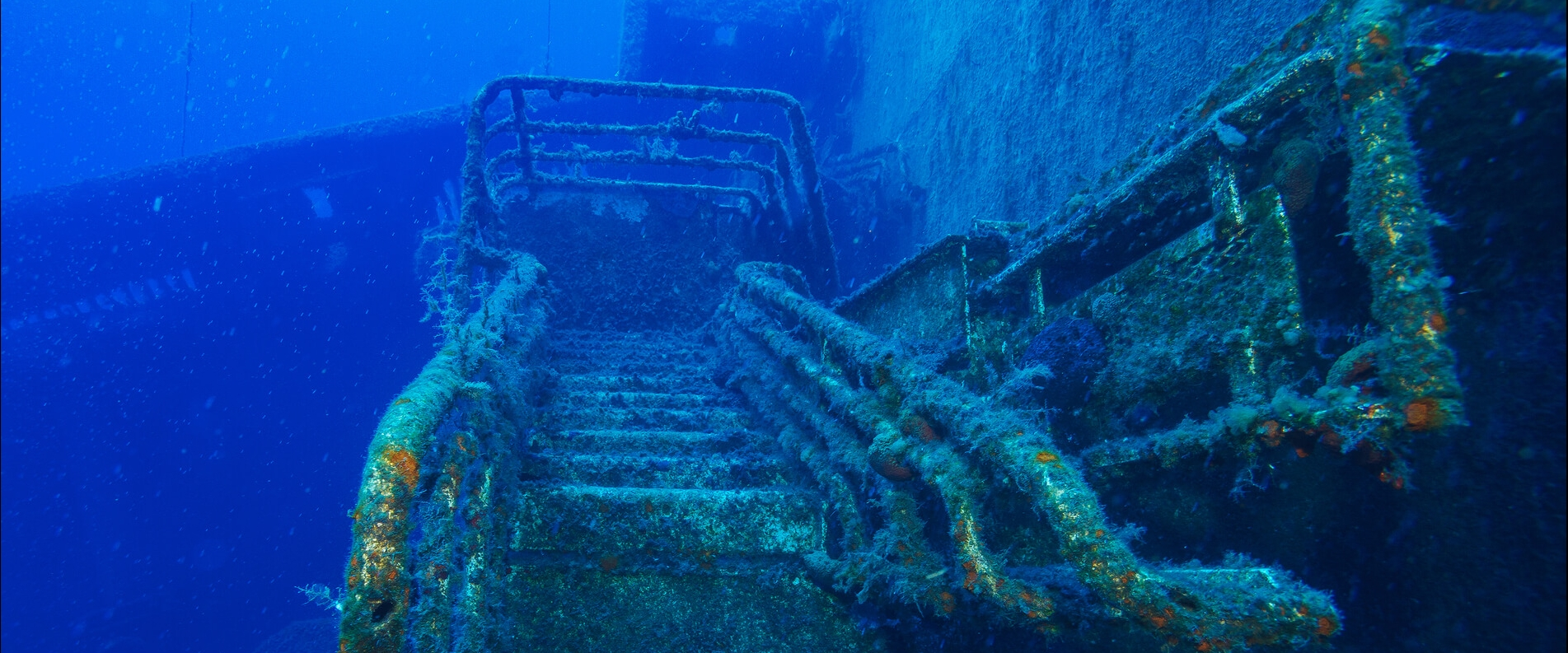Diving Zenobia Ship Wreck