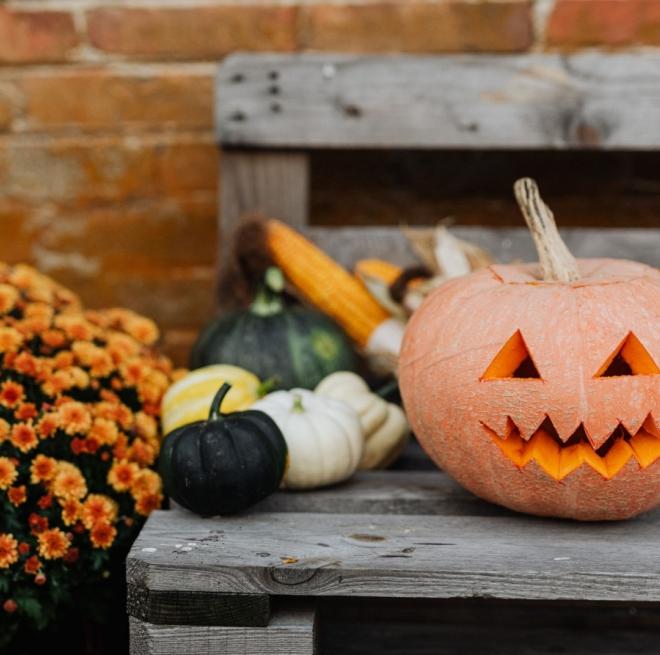 Spooky Scary Movies: киноподборка к Хэллоуину